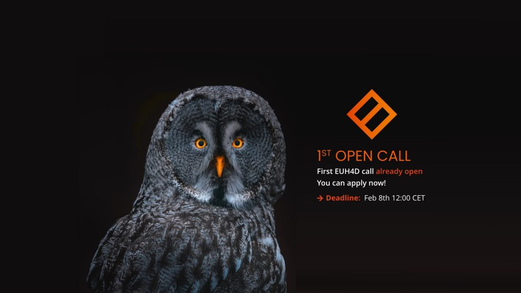 EUH4D-open-call-new